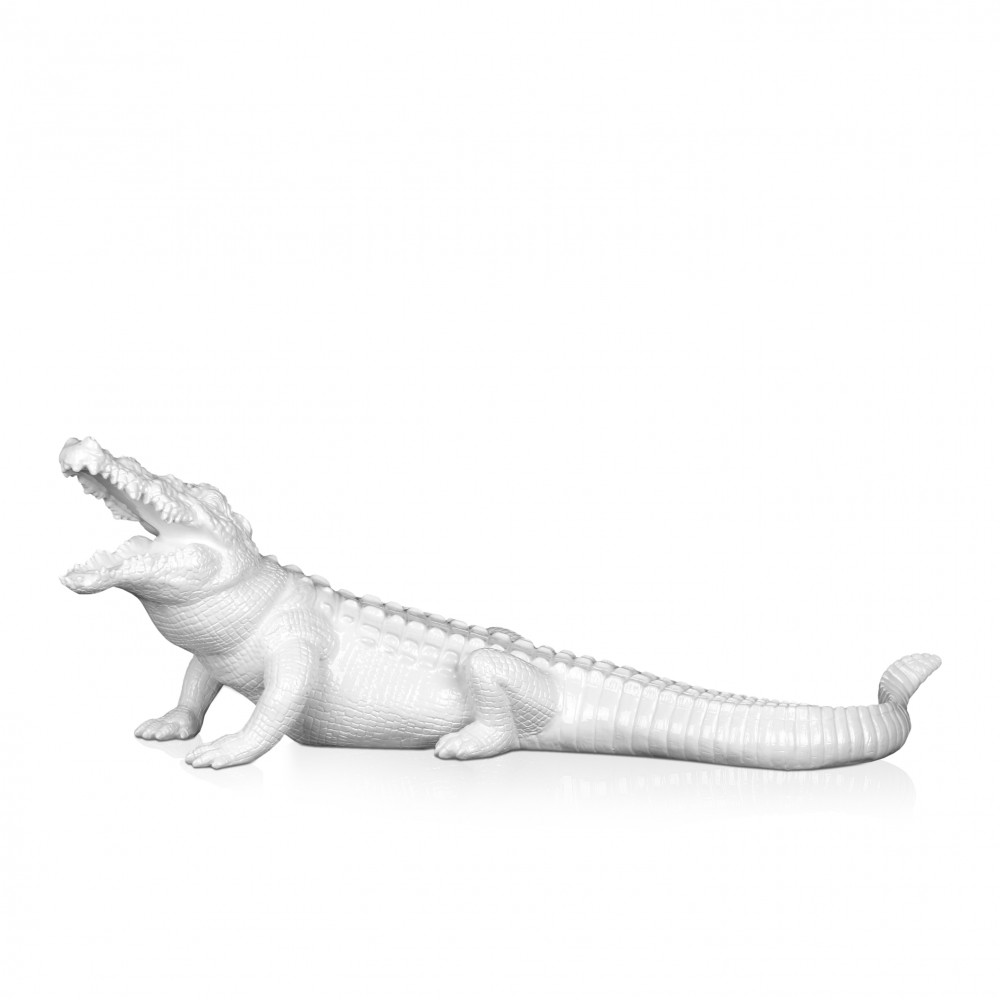 D5923PW - Crocodile