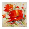 AS428X1 - Rote Mohnblumen